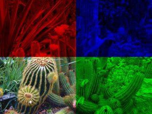 Pythonで画像処理 画像配列とRGBを理解しよう!